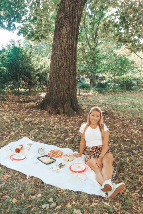 Coterie party picnic