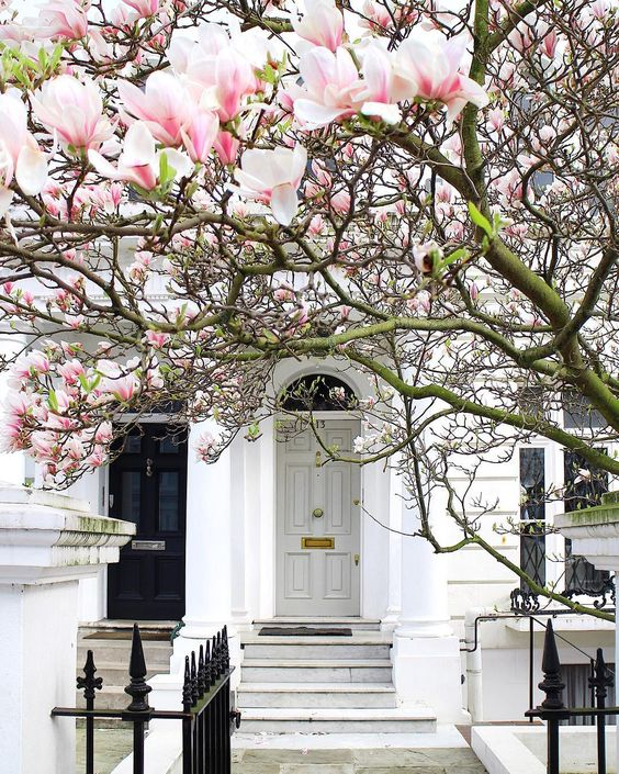 Notting Hill lifestyle